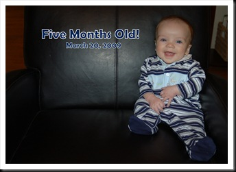 Five Months Old