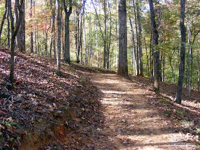 Homestead Trail Path
