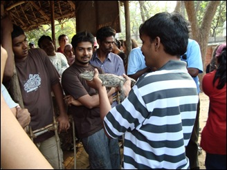 CTC_members_holding_the_baby_croc_5