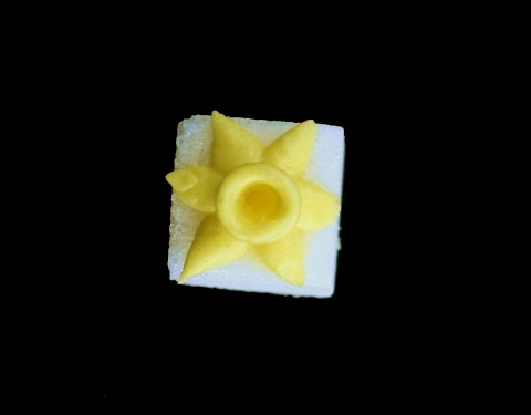 daffodil close upedit.jpg