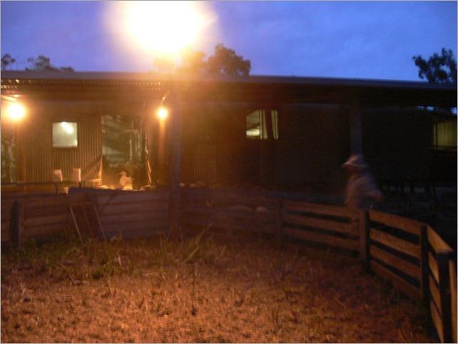 yard shed r