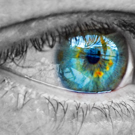 Smaragd eyes by Vedrana Vidovic - People Body Parts ( smaragd, d3100, eyes )