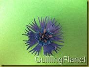 QuillingPlanet_218