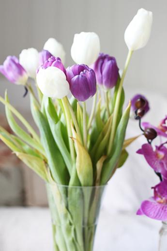 tulipaner-på-en-torsdag2
