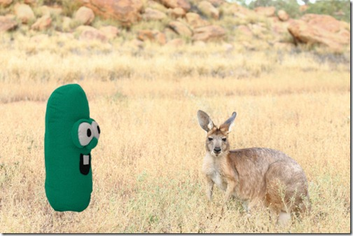 Australia copy