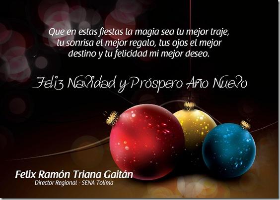 Feliz Navidad SENA Tolima