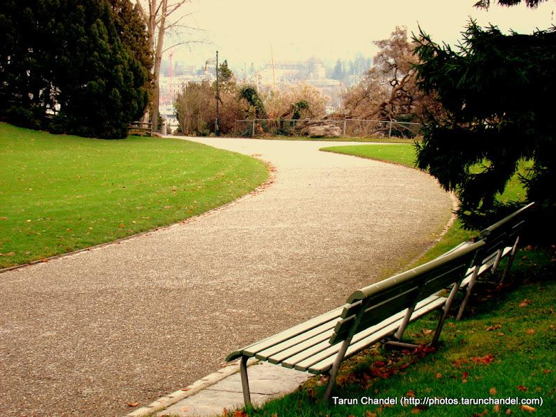Path I took, Tarun Chandel Photoblog