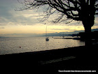 Switzerland Trip: Stroll along the Zurich Lake, Tarun Chandel Photoblog