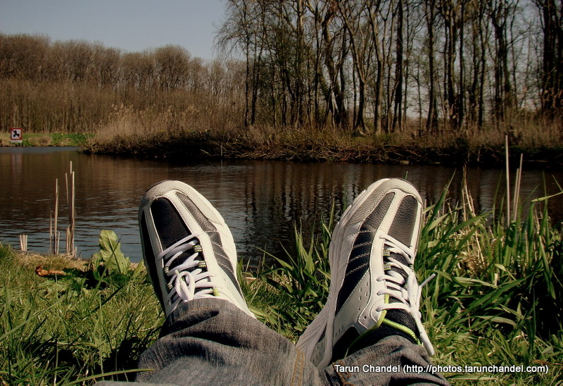Relaxing By Canalbank Forest Netherlands, Tarun Chandel Photoblog