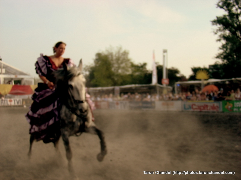 Spanish Horse Tricks Girls Spanish Feria Brussels, Tarun Chandel Photoblog