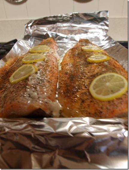 salmon upclose 1,12 021