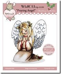 E238_PrayingAngel