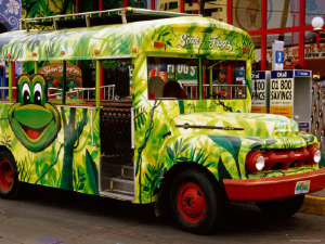 cummins-richard-bus-outside-senor-frogs-bar-and-restaurant-mazatlan-sinaloa-mexico.k6VTaJbWnokE.jpg