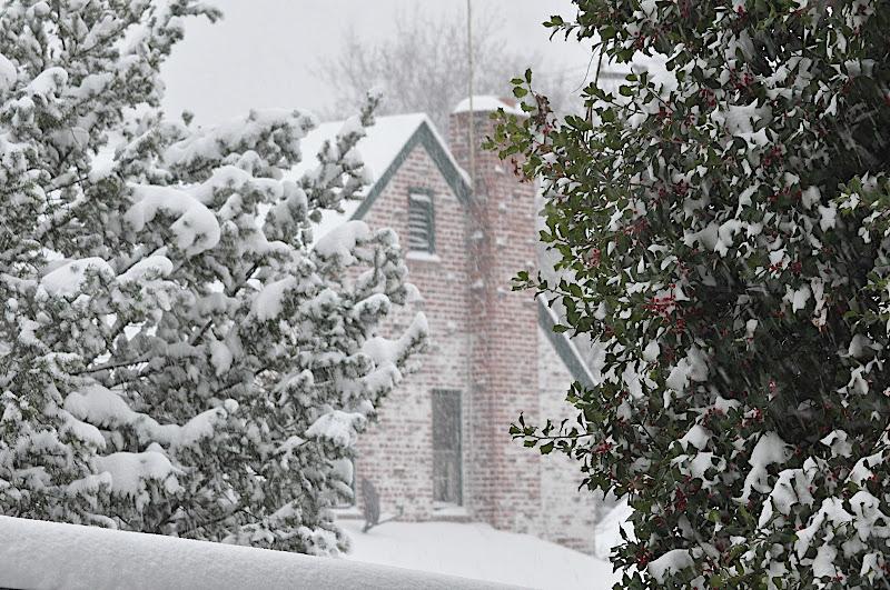 snow storm scene