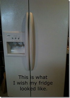 front of fridge copy