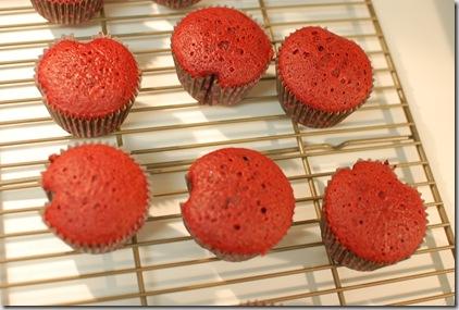 cupcakes 009