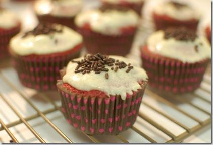 cupcakes 015