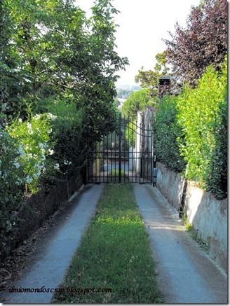Firenze 694a