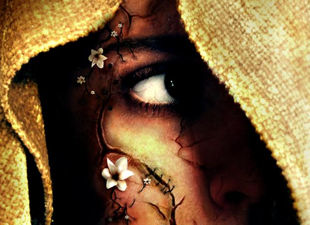 [Hidden_Beauty_by_Windcharmer[6].png]