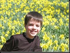 Daffodil gardens 025