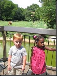 Zoo Aug '10 003
