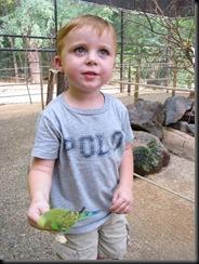 Zoo Aug '10 010