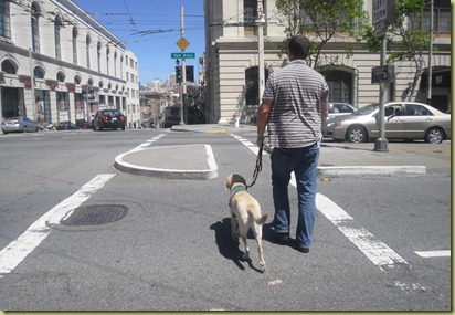 Reyna and Tony crossing Van Ness St.  Reyna is walking nicely on a loose leash.