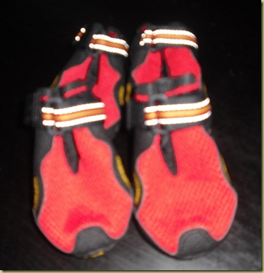 A photo of Reyna's red booties.