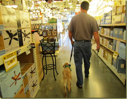 Vienna walking nicely next to Tony at Home Depot.