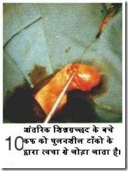 hindicirc10