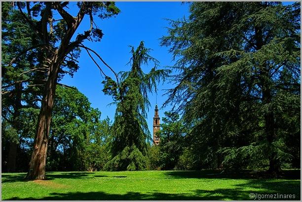 Botanico II