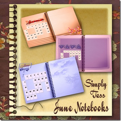 SimplyTess June Notebooks Preview