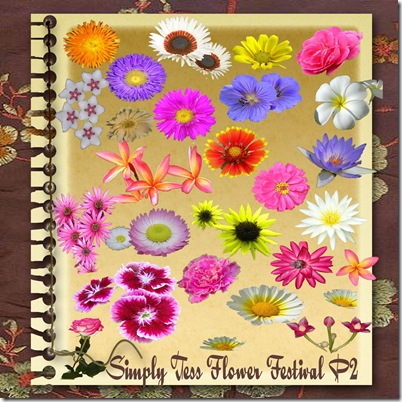 SimplyTess Flower Festival P2 Preview