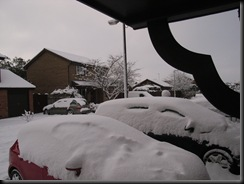 Dec-2010 001