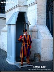 Vatican8