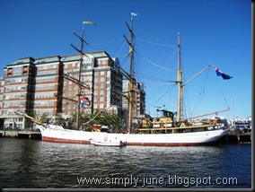 TallShip_PictonCastle