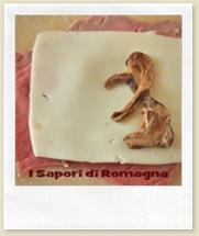 R form funghi.jpg