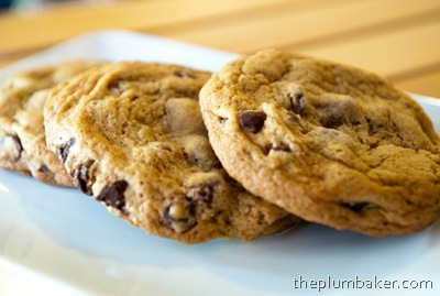 chocolate_chip_cookie_corey_mcpherson_520x500