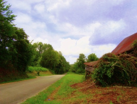 country lane edit