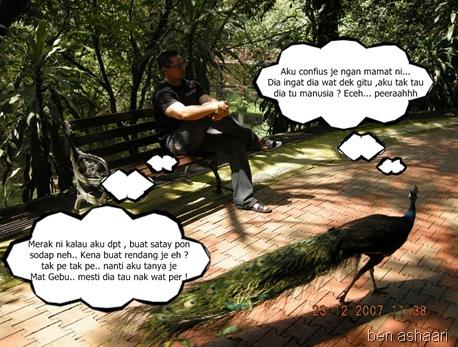 dialog 10