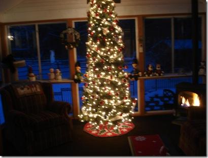 Christmas decorations 2010 002