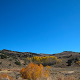 Lots of aspen groves in the area were changing color.
