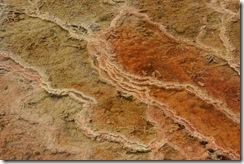 yellowstone 021