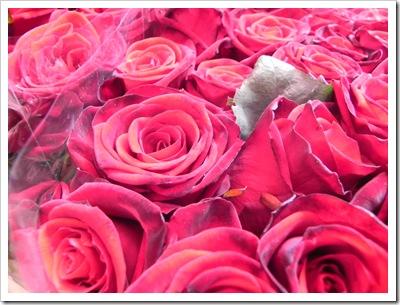Columbia Road - Roses