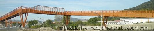 puente-madera (8)