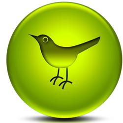 Twitter Bola Verde