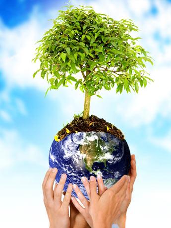 Cuidar do planeta está em nossas mãos