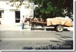 Hestevogn er normalt på hovedvejen