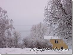 Vintervejr på Falster