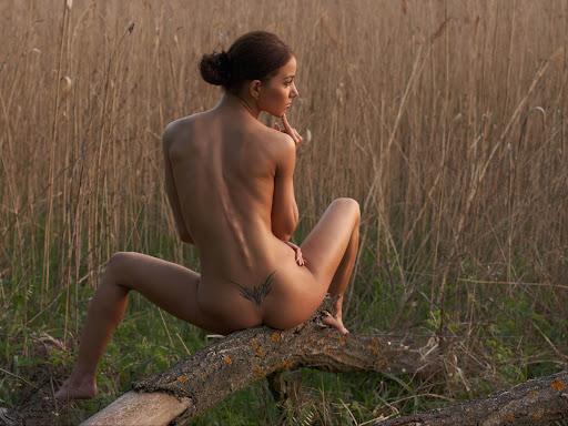 desnudo erotismo tatuaje